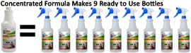 Professional Cleaning Solutions Right to Your Home! HomePro by Design